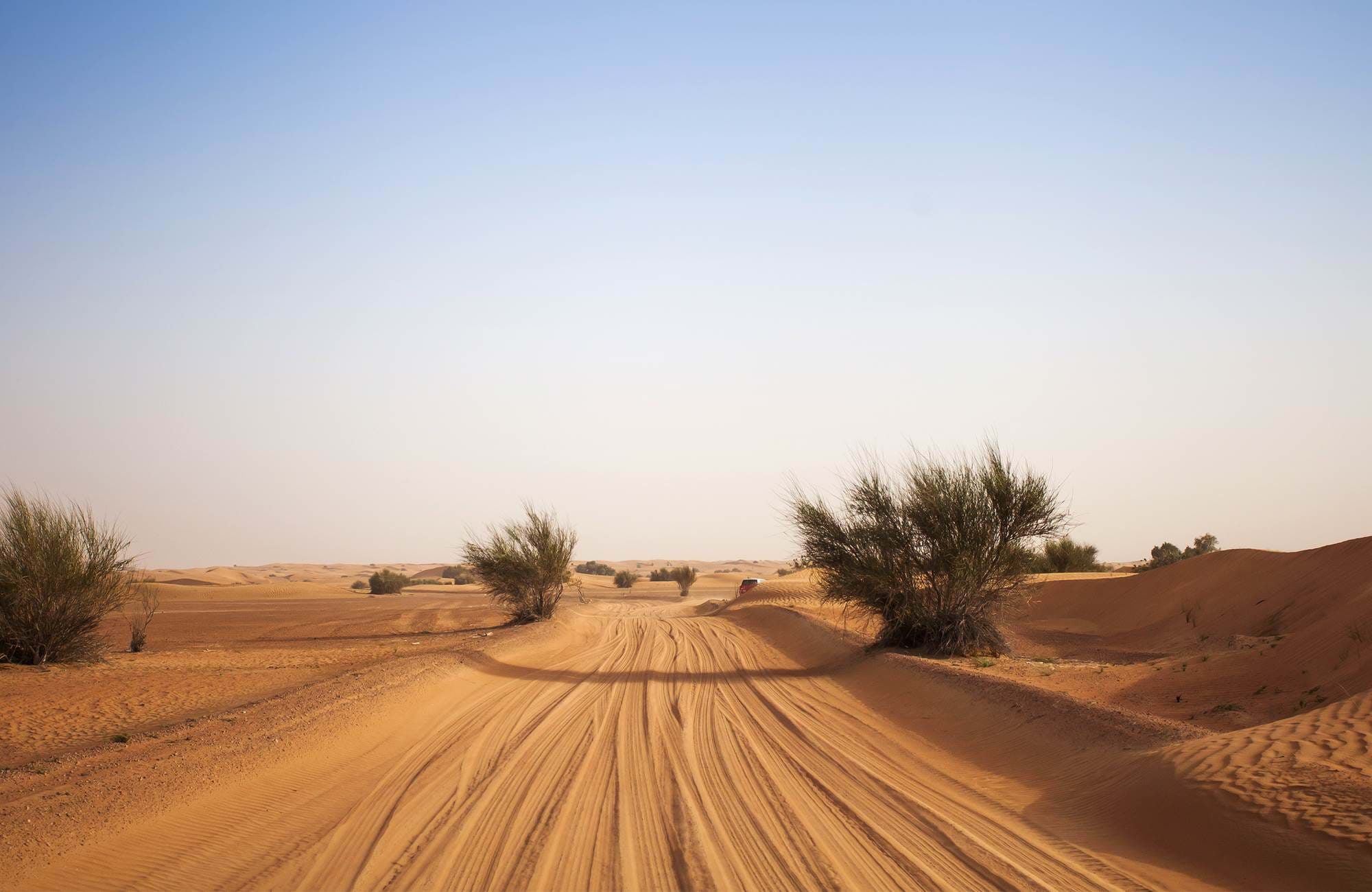 middle-east-desert-road-cover