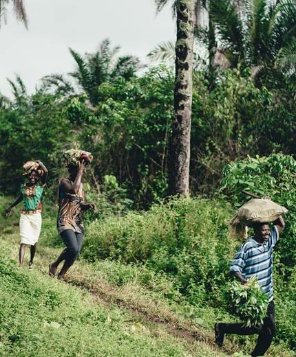 travel to tanzania tours in tanzania kilroy
