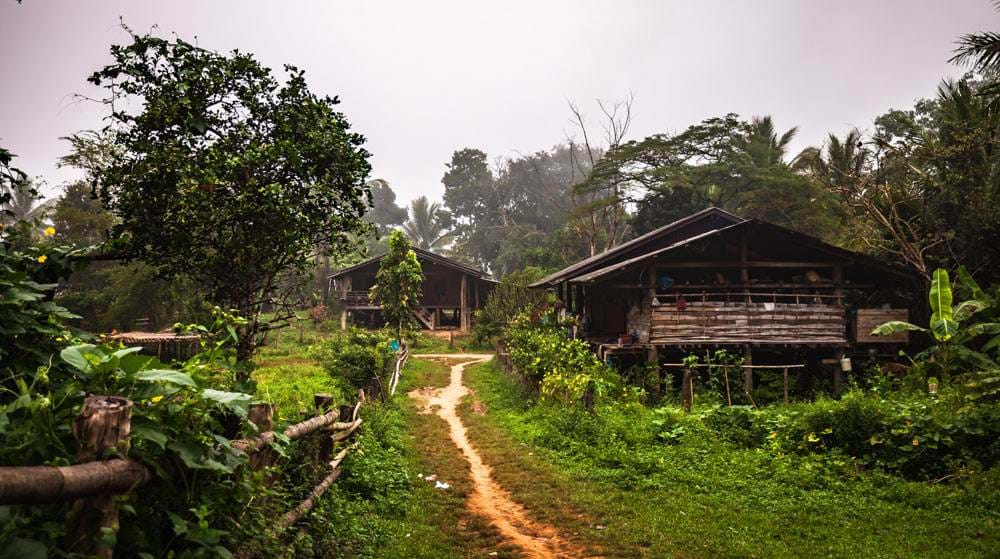 umphang-jungle-trekking-local-house