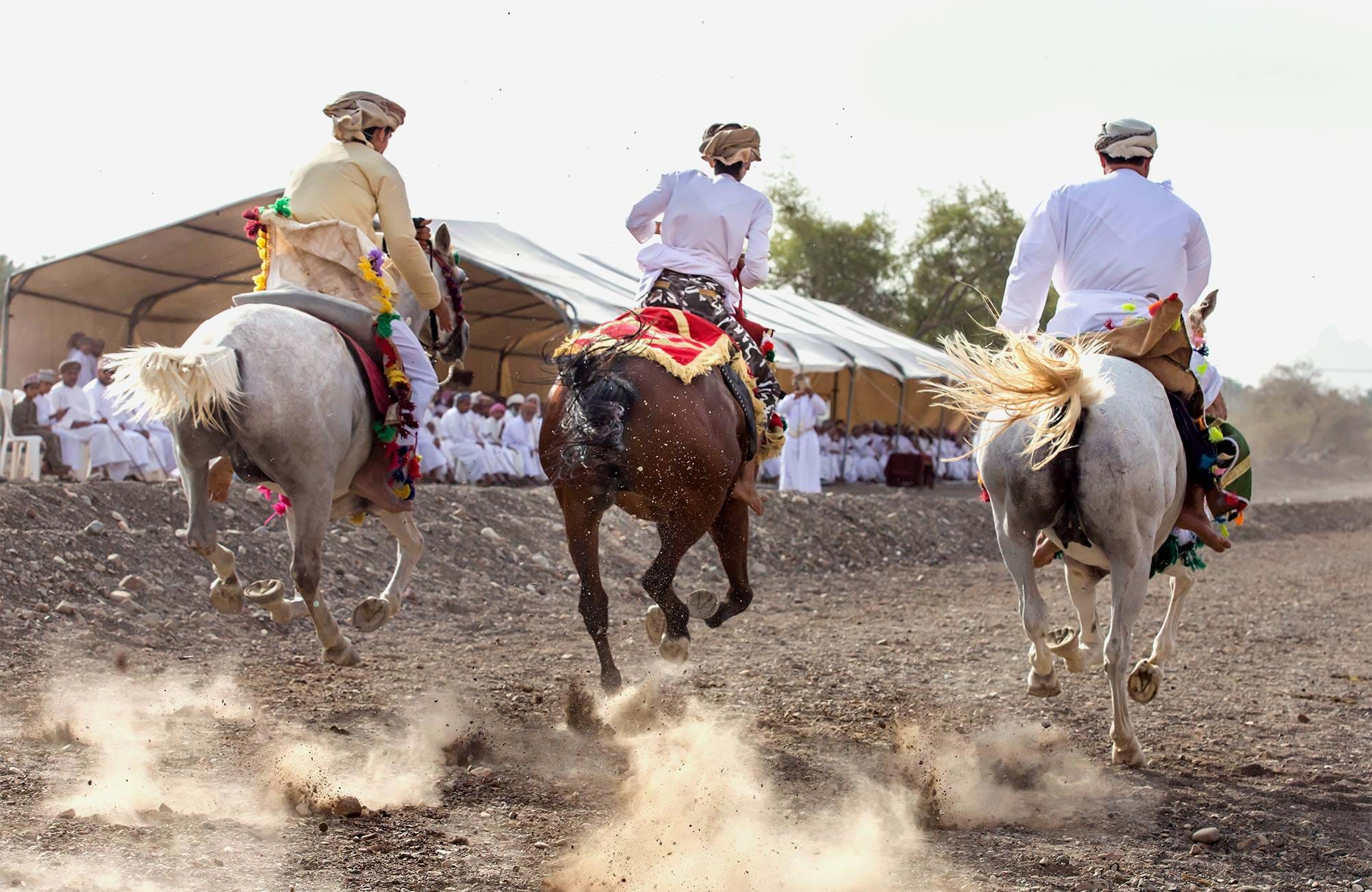 oman-horse-riding-dust-cover