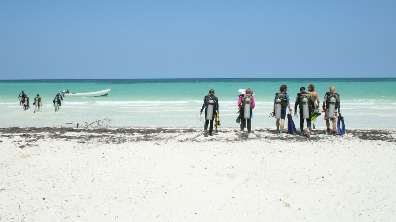 Volunteers on a beach in Mexico
