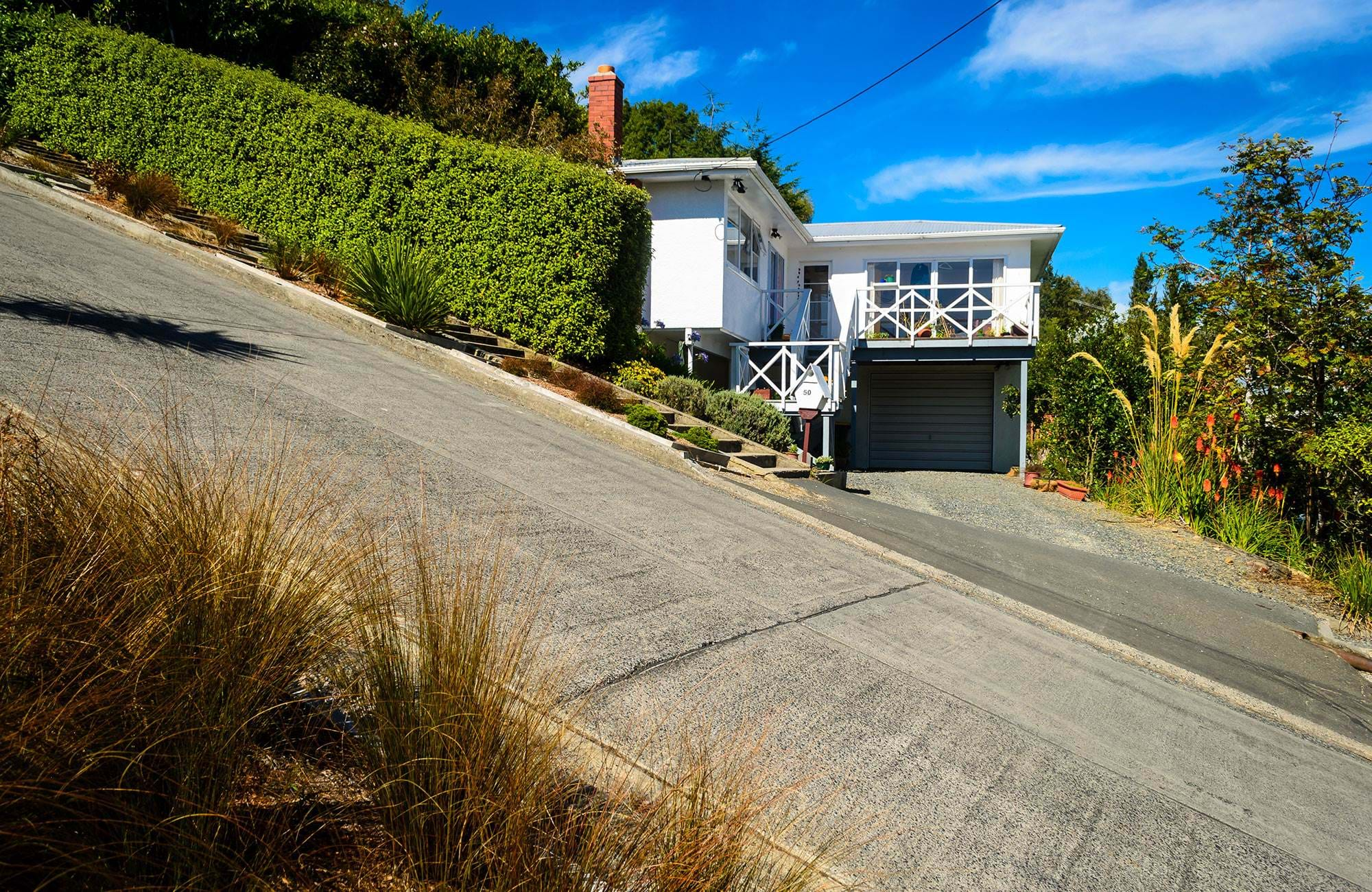 Baldwin Street in Otago - steepest street in the world