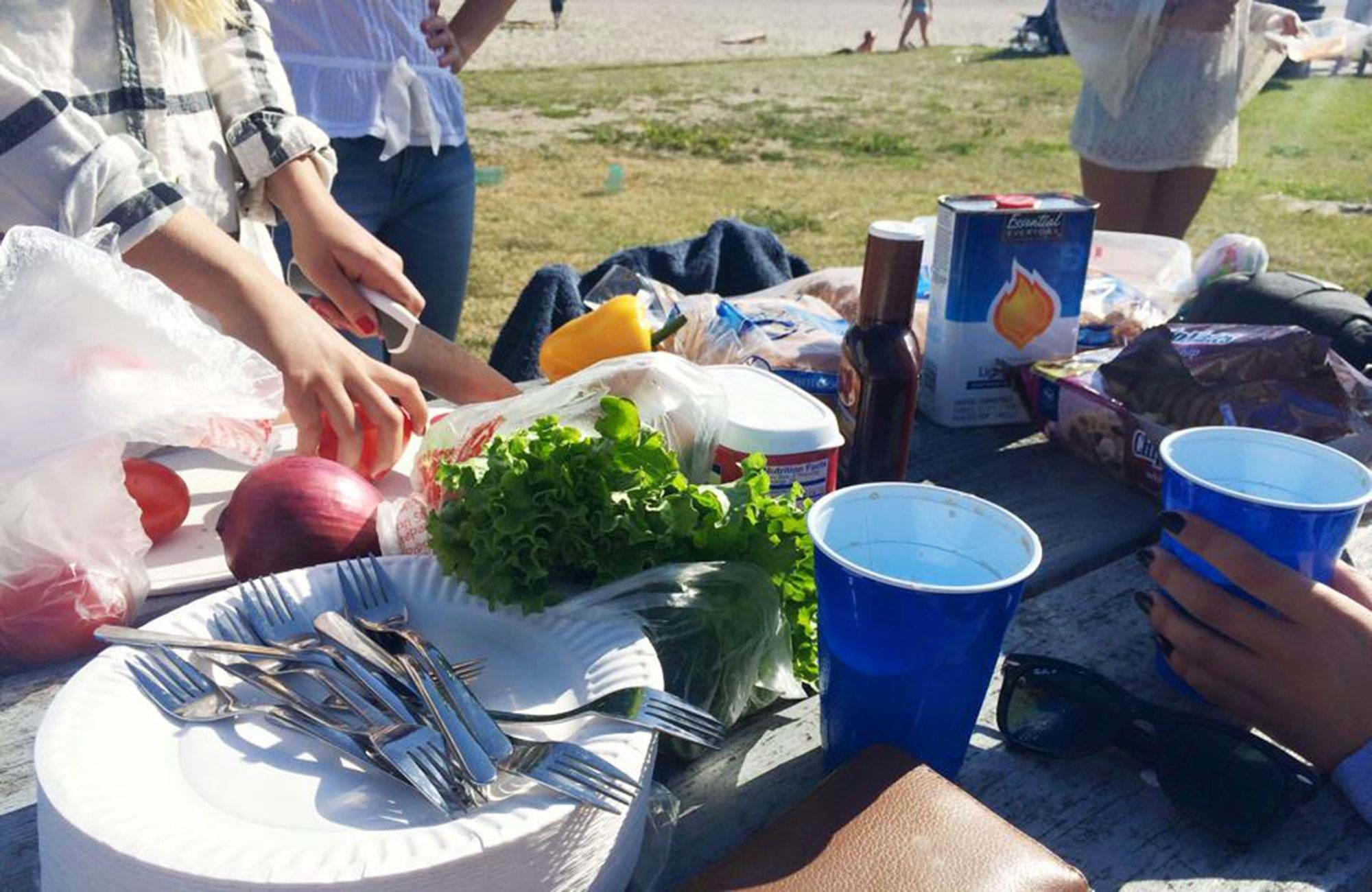 picnic for sbcc students